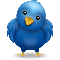 Image of twitter logo which is a blue bird with yellow beak with a very cute inquisitive look